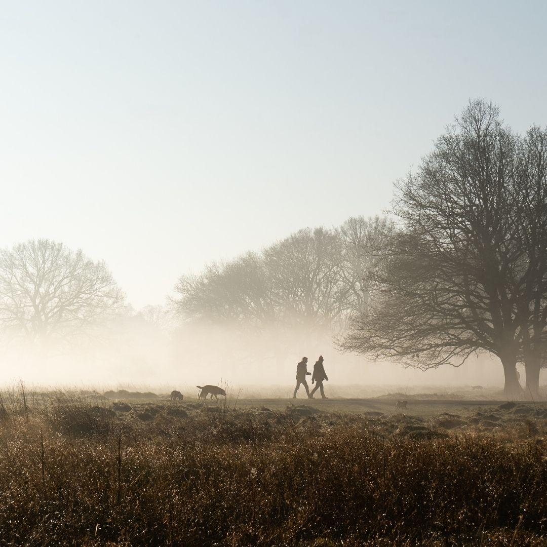paseo-por-el-campo
